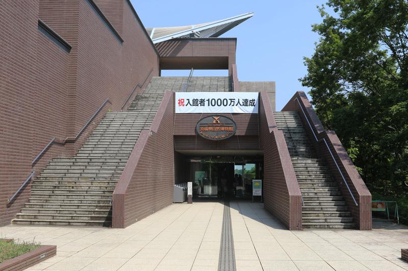 博物館 茨城 県 自然